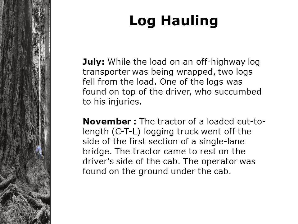 Log Hauling July: While the load on an off-highway log transporter was being wrapped, two logs fell from the load. One of the logs was found on top of