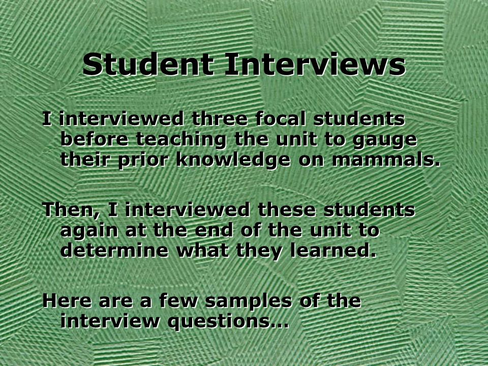 Focal Student One A high achieving student in the class Interview Question: What is a mammal.