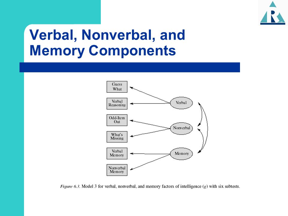 Verbal, Nonverbal, and Memory Components
