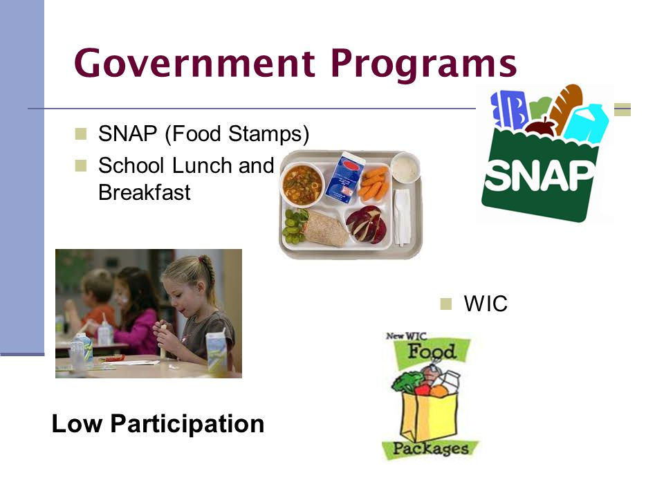 Government Programs SNAP (Food Stamps) School Lunch and Breakfast WIC Low Participation