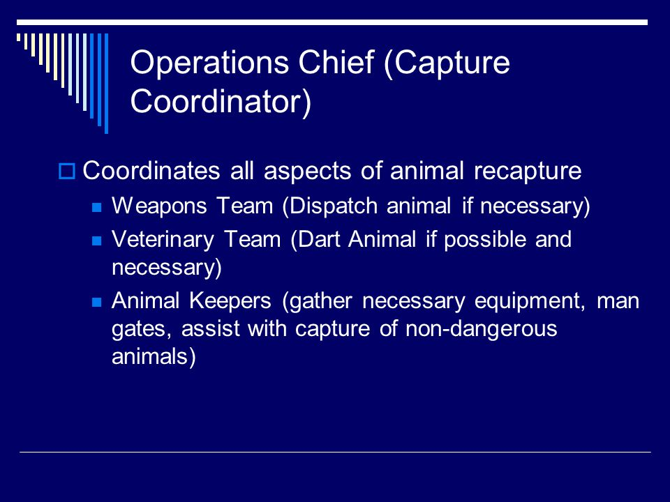 Operations Chief (Capture Coordinator)  Coordinates all aspects of animal recapture Weapons Team (Dispatch animal if necessary) Veterinary Team (Dart Animal if possible and necessary) Animal Keepers (gather necessary equipment, man gates, assist with capture of non-dangerous animals)