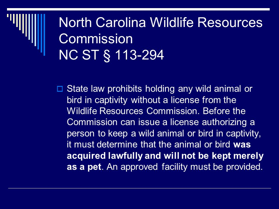 North Carolina Wildlife Resources Commission NC ST § 113-294  State law prohibits holding any wild animal or bird in captivity without a license from the Wildlife Resources Commission.