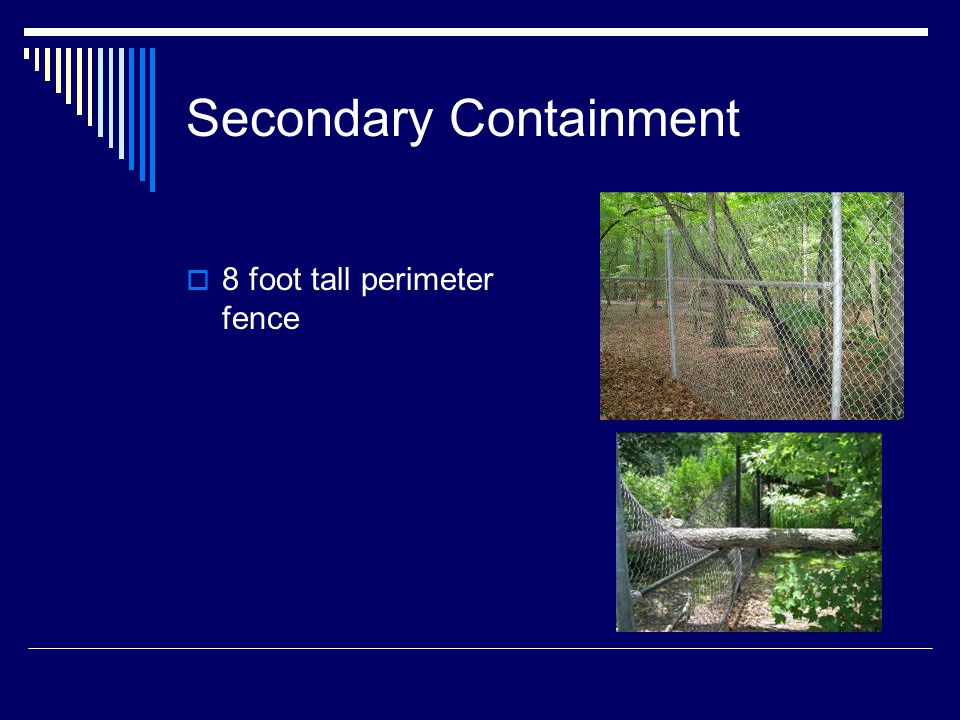Secondary Containment  8 foot tall perimeter fence