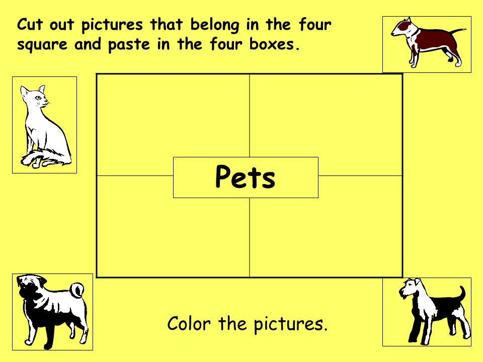 Pets Cut out pictures that belong in the four square and paste in the four boxes. Color the pictures.