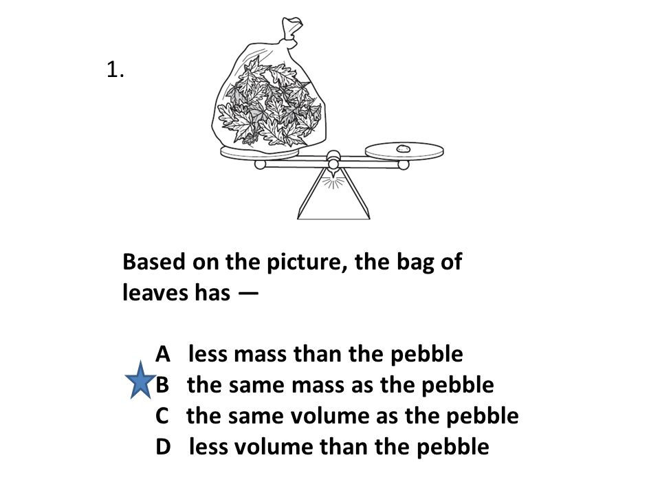Based on the picture, the bag of leaves has — A less mass than the pebble B the same mass as the pebble C the same volume as the pebble D less volume