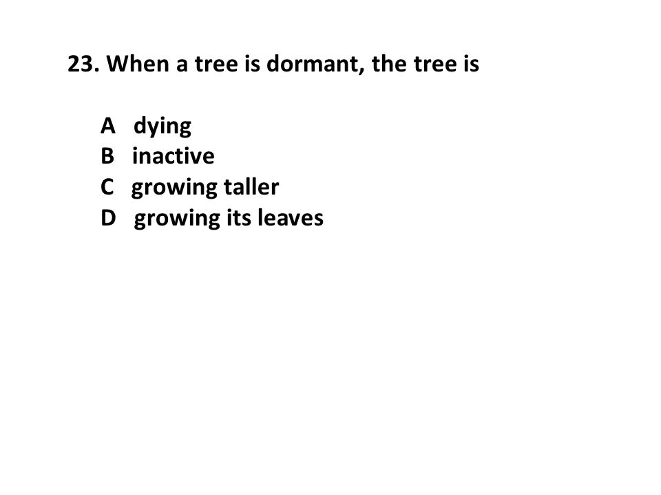 23. When a tree is dormant, the tree is A dying B inactive C growing taller D growing its leaves