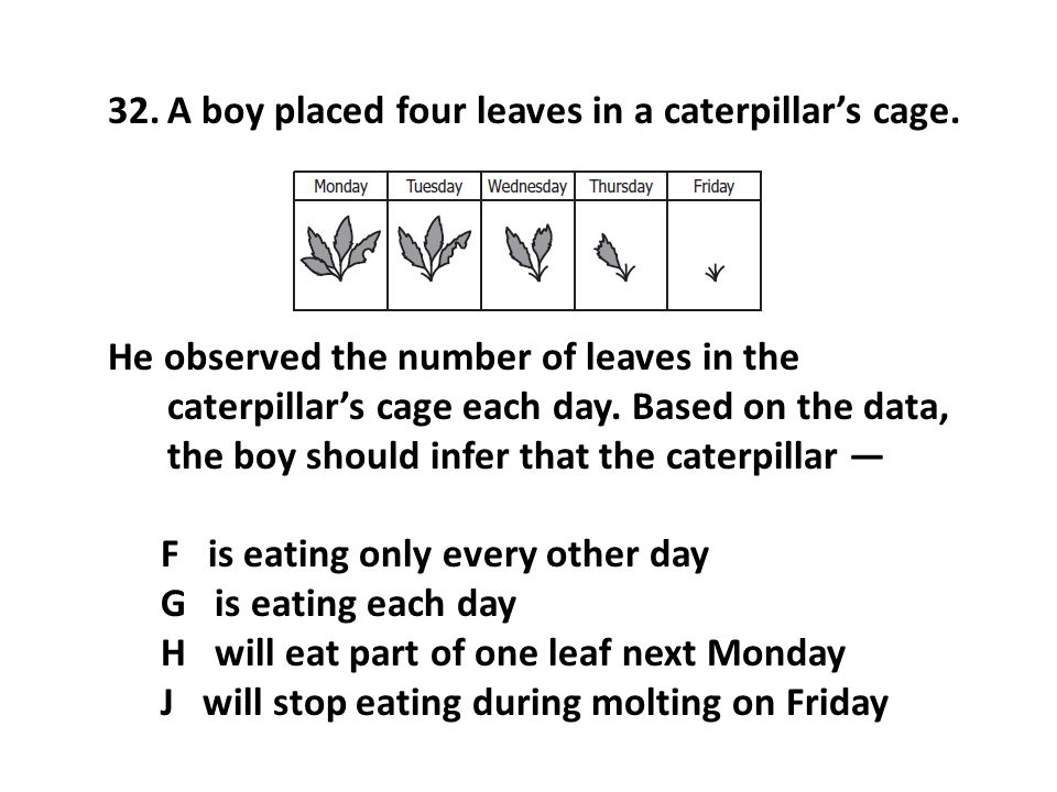 32.A boy placed four leaves in a caterpillar's cage. He observed the number of leaves in the caterpillar's cage each day. Based on the data, the boy s