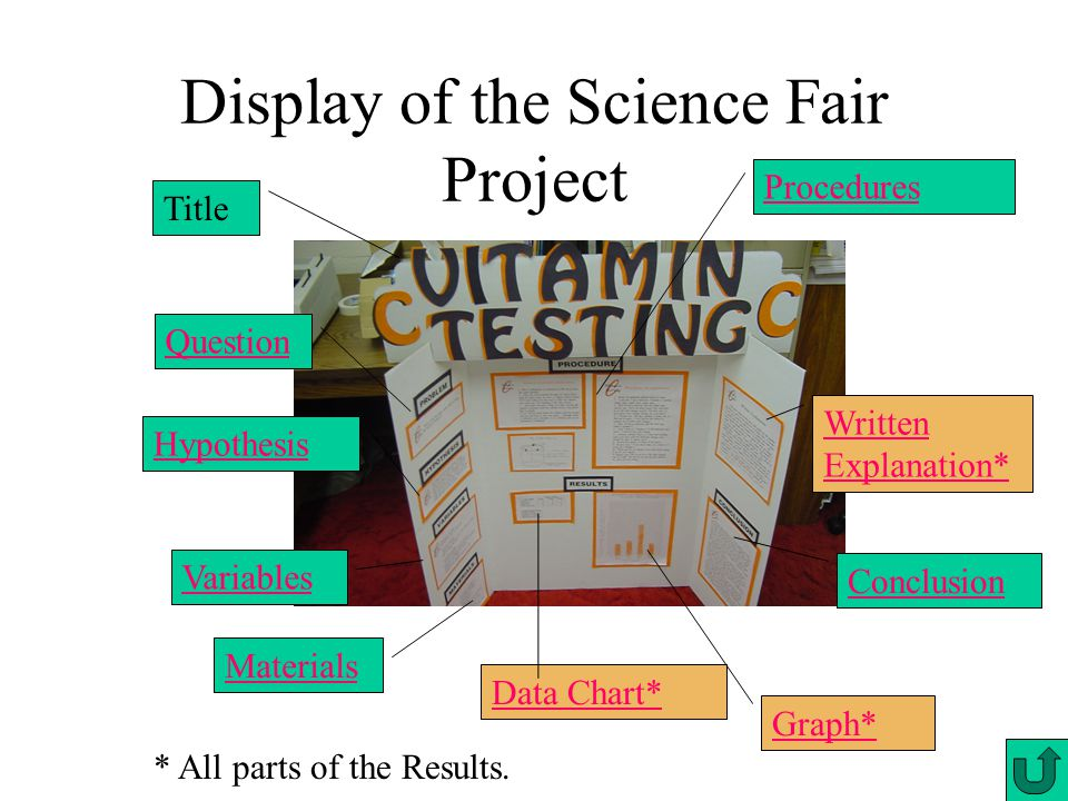 Display of the Science Fair Project Title Hypothesis Variables Materials Data Chart* Graph* Conclusion Written Explanation* Procedures * All parts of the Results.