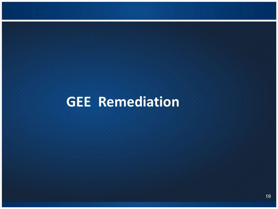 GEE Remediation 19