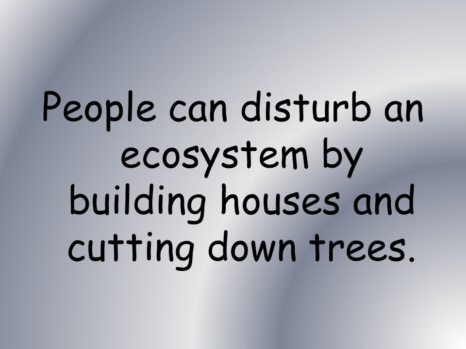 Science How can people disturb an ecosystem?