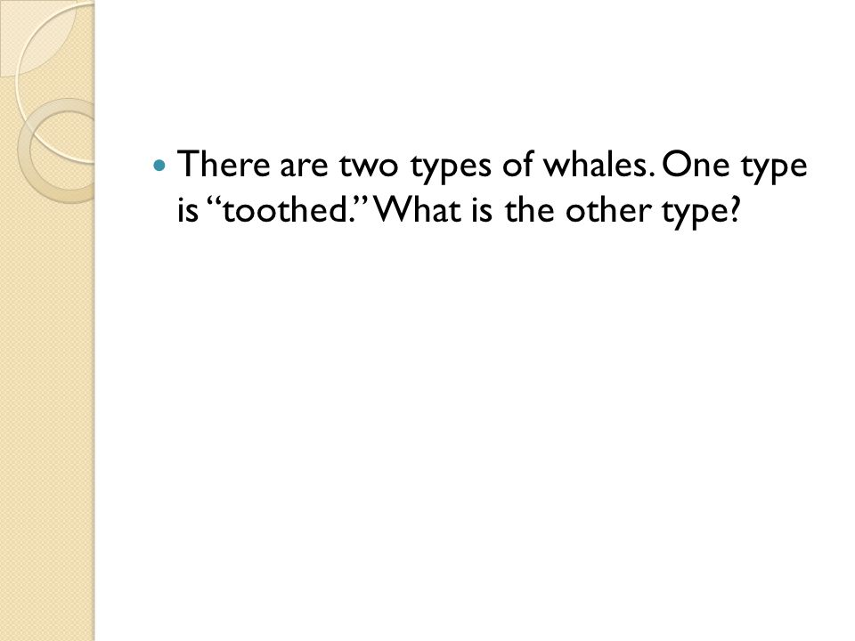 There are two types of whales. One type is toothed. What is the other type