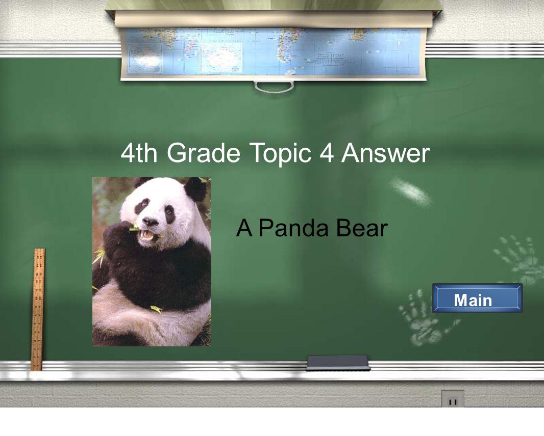 4th Grade Topic 4 Answer Main A Panda Bear