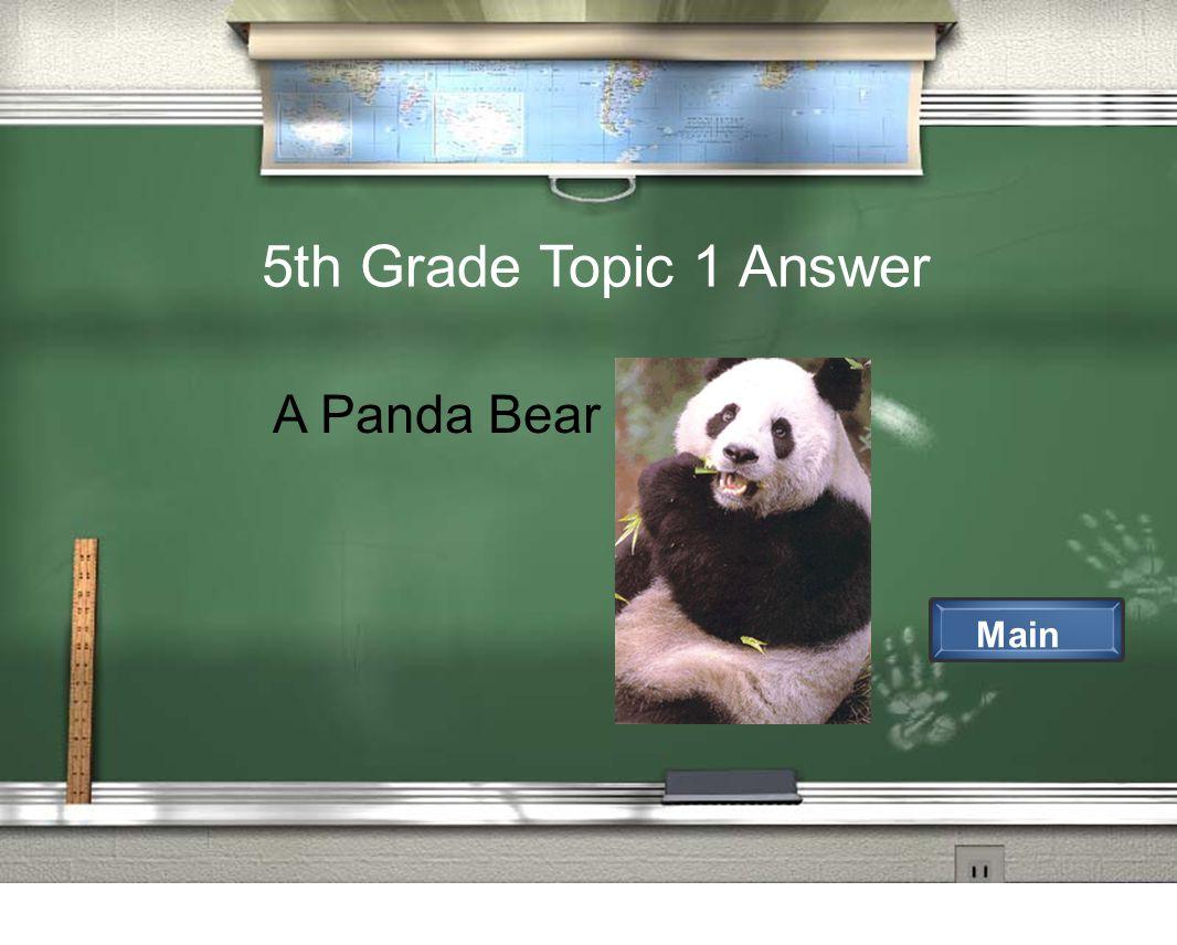 5th Grade Topic 1 Answer Main A Panda Bear