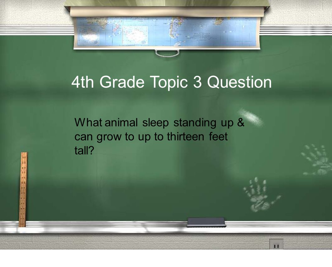 4th Grade Topic 3 Question What animal sleep standing up & can grow to up to thirteen feet tall?