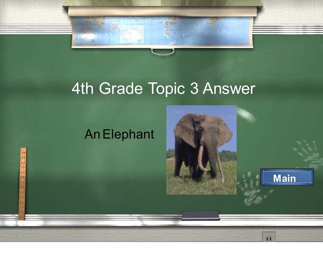 4th Grade Topic 3 Answer Main An Elephant