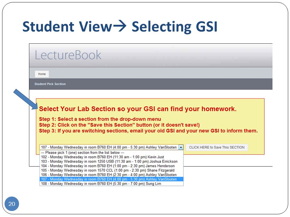 Student View  Selecting GSI 20