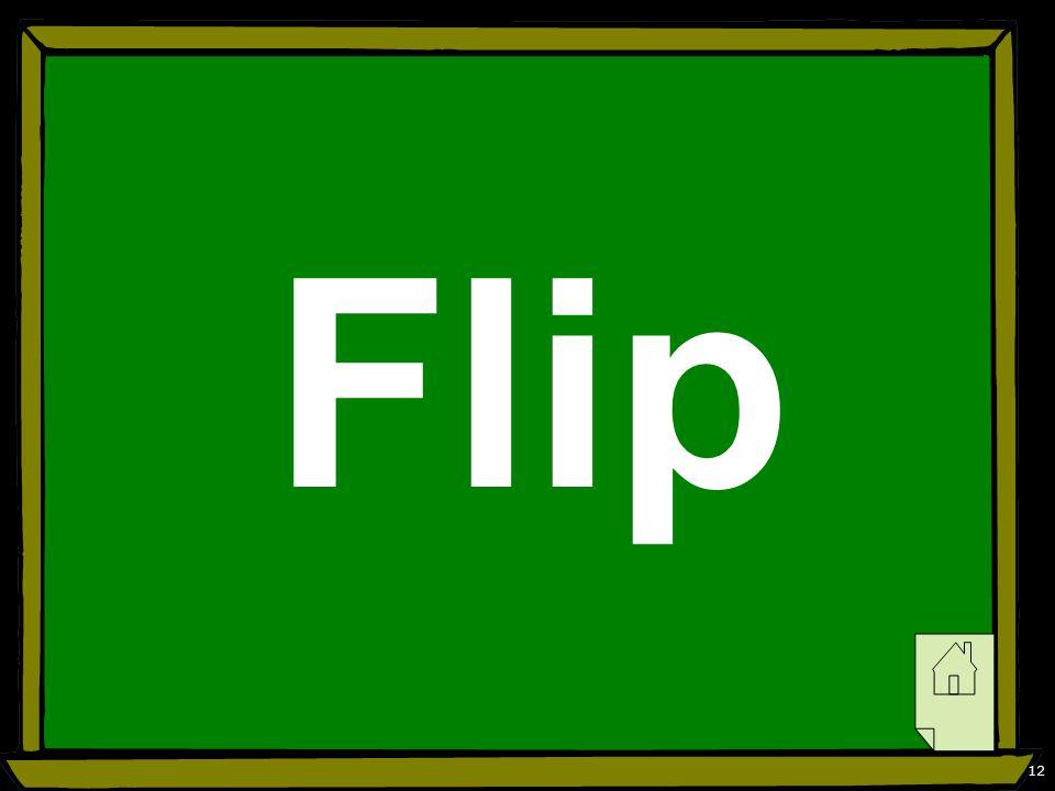12 Flip
