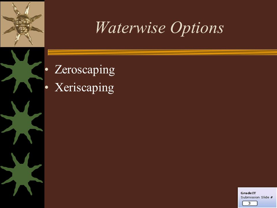 Waterwise Options Zeroscaping Xeriscaping 3