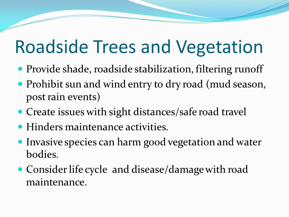 Roadside Trees and Vegetation Provide shade, roadside stabilization, filtering runoff Prohibit sun and wind entry to dry road (mud season, post rain events) Create issues with sight distances/safe road travel Hinders maintenance activities.