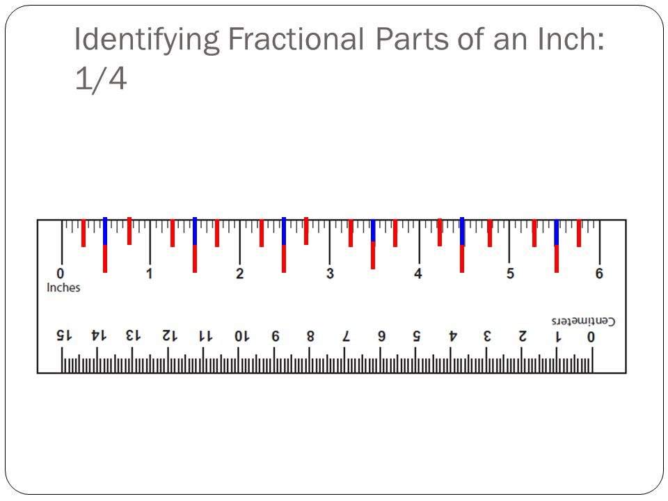 Identifying Fractional Parts of an Inch: 1/4