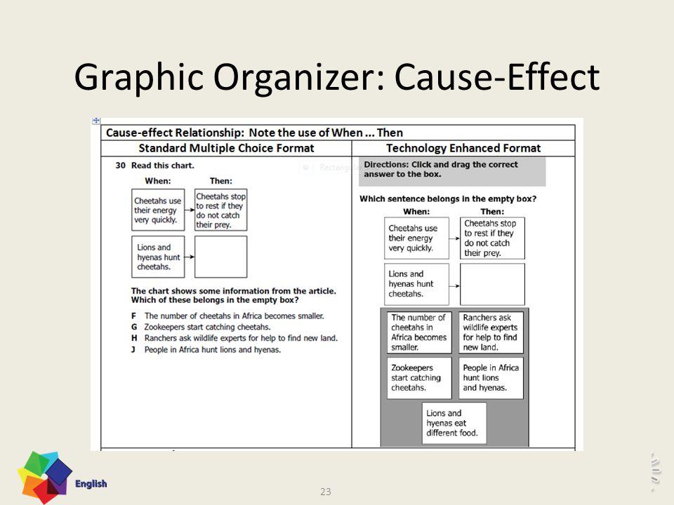 22 Graphic Organizer: Flow Chart 22