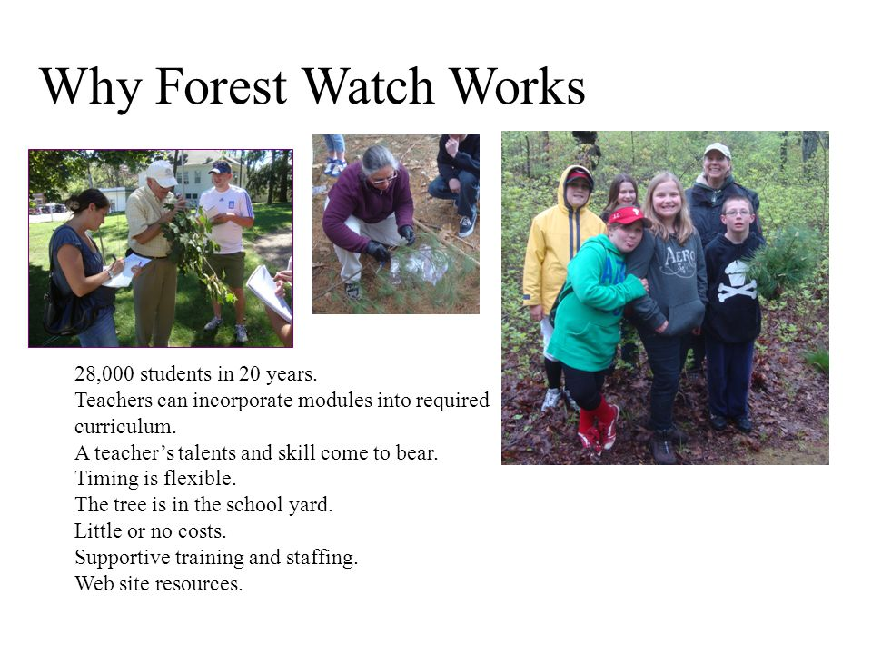 Why Forest Watch Works 28,000 students in 20 years.