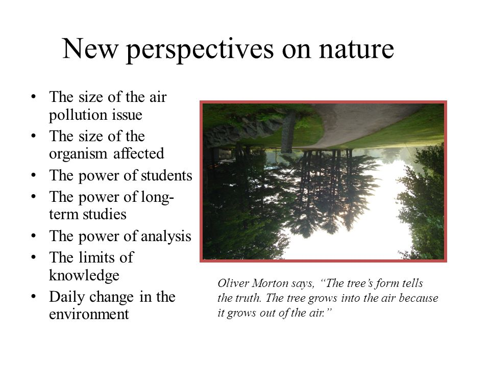 New perspectives on nature The size of the air pollution issue The size of the organism affected The power of students The power of long- term studies The power of analysis The limits of knowledge Daily change in the environment Oliver Morton says, The tree's form tells the truth.