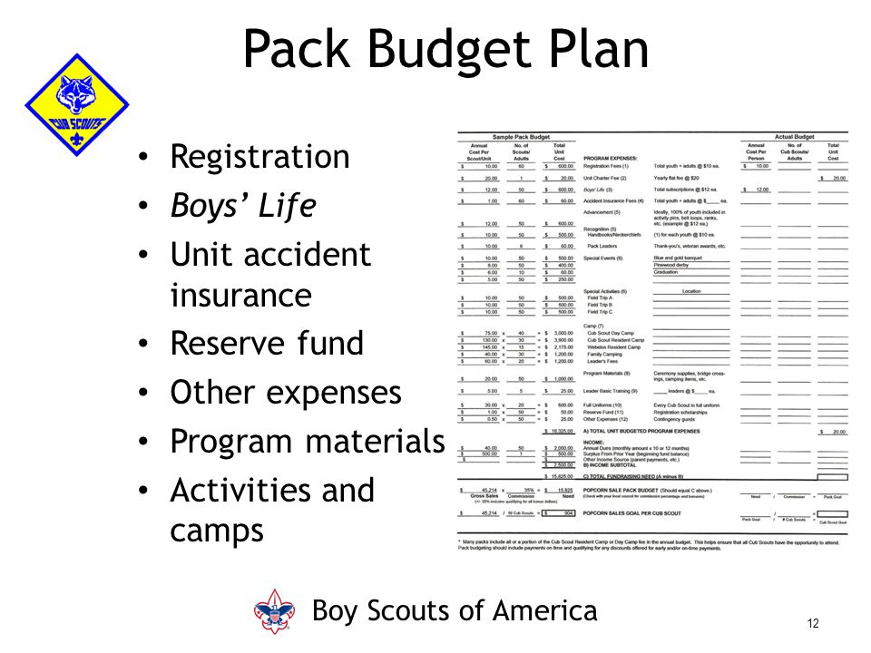 Pack Budget Plan Registration Boys' Life Unit accident insurance Reserve fund Other expenses Program materials Activities and camps Boy Scouts of Amer