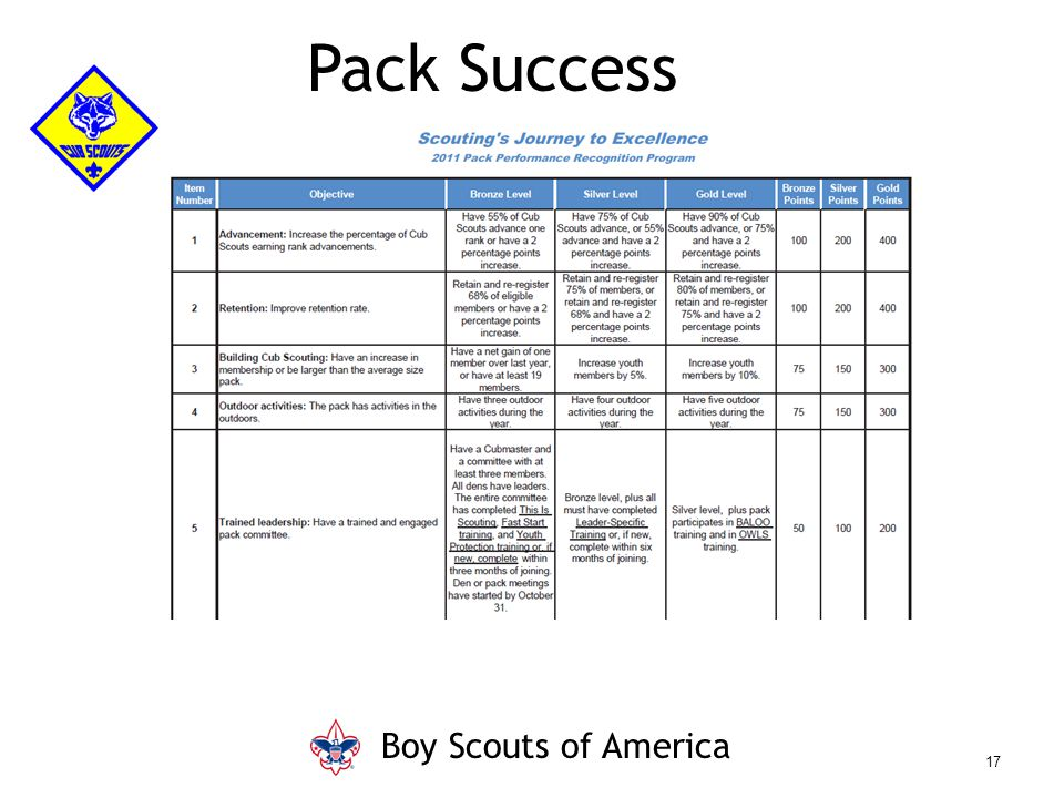 Pack Success Boy Scouts of America 17