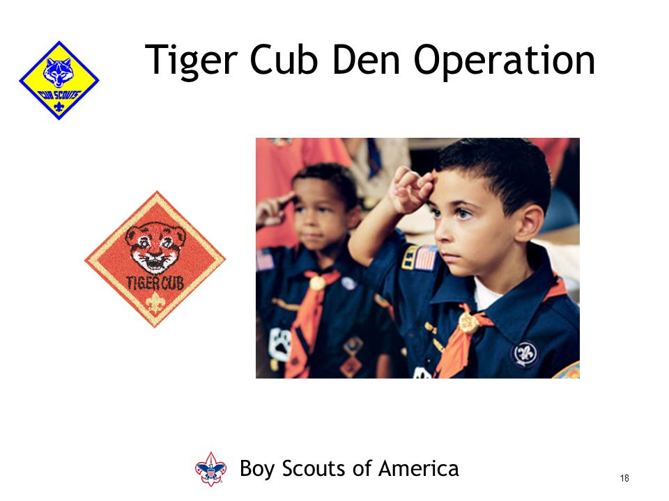Tiger Cub Den Operation Boy Scouts of America 18