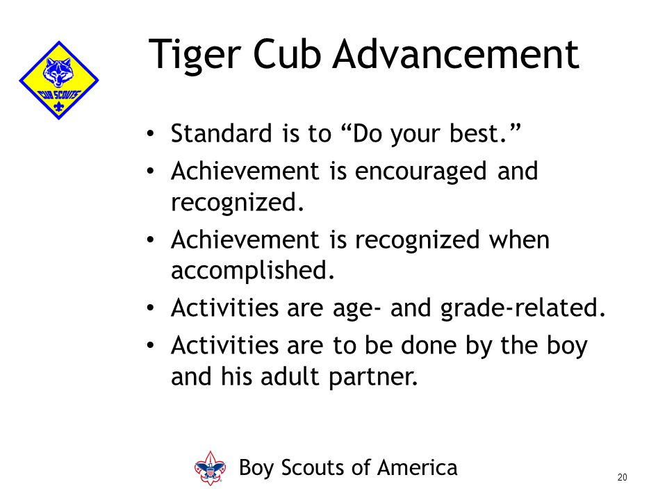 "Standard is to ""Do your best."" Achievement is encouraged and recognized. Achievement is recognized when accomplished. Activities are age- and grade-re"