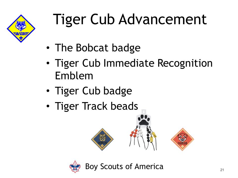 The Bobcat badge Tiger Cub Immediate Recognition Emblem Tiger Cub badge Tiger Track beads Tiger Cub Advancement Boy Scouts of America 21