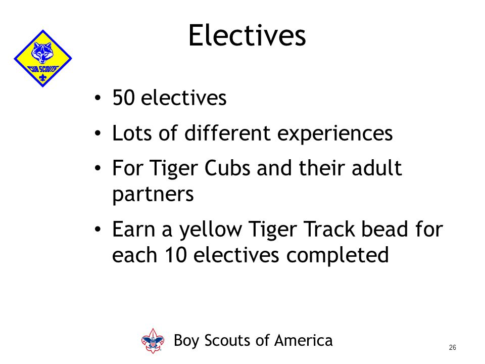 50 electives Lots of different experiences For Tiger Cubs and their adult partners Earn a yellow Tiger Track bead for each 10 electives completed Elec