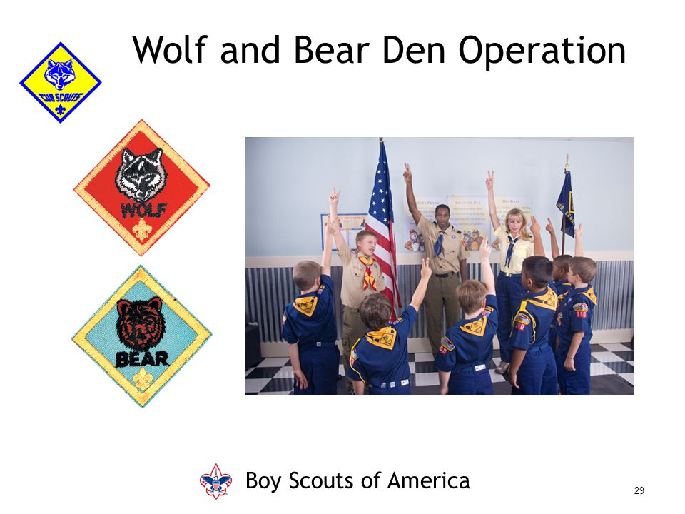 Wolf and Bear Den Operation Boy Scouts of America 29
