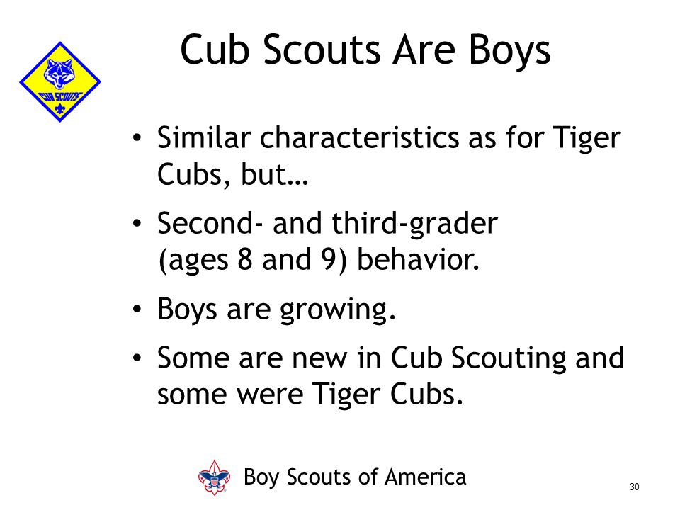 Similar characteristics as for Tiger Cubs, but… Second- and third-grader (ages 8 and 9) behavior. Boys are growing. Some are new in Cub Scouting and s