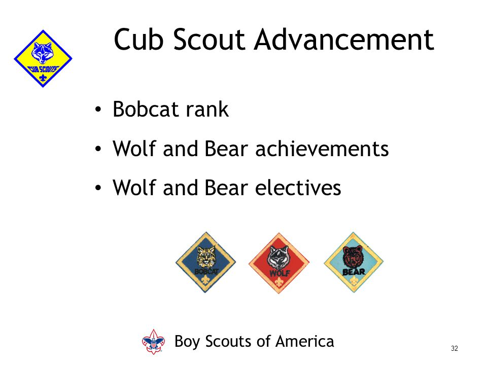 Bobcat rank Wolf and Bear achievements Wolf and Bear electives Cub Scout Advancement Boy Scouts of America 32