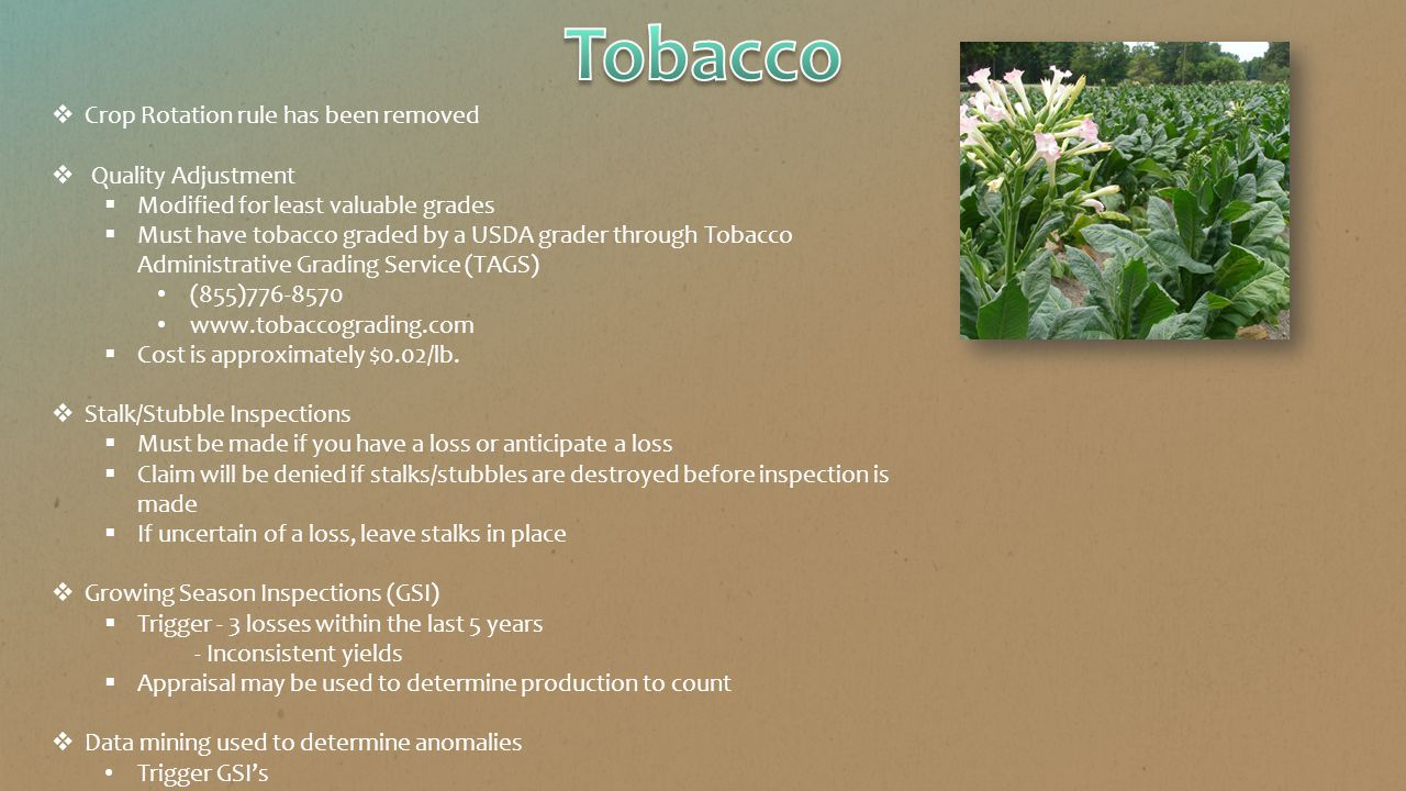  Crop Rotation rule has been removed  Quality Adjustment  Modified for least valuable grades  Must have tobacco graded by a USDA grader through Tobacco Administrative Grading Service (TAGS) (855)776-8570 www.tobaccograding.com  Cost is approximately $0.02/lb.