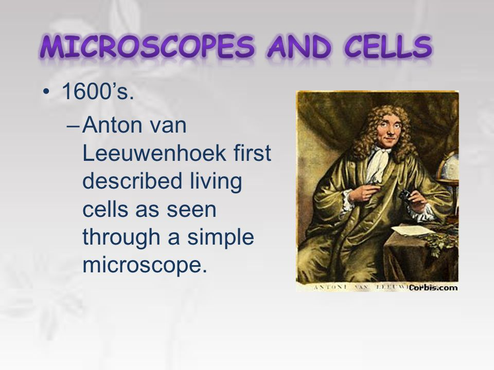 The Cell –The basic unit of an organism –Discovery made possible by the invention of the microscope