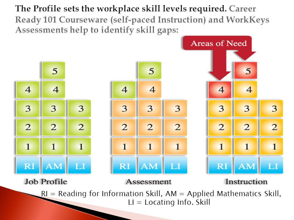 RI = Reading for Information Skill, AM = Applied Mathematics Skill, LI = Locating Info. Skill