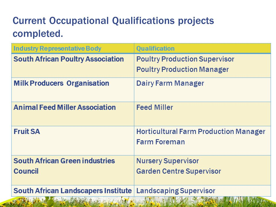 Current Occupational Qualifications projects completed..