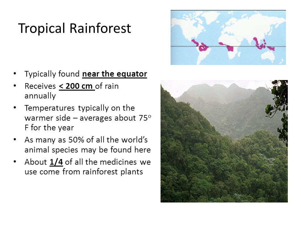 Tropical Rainforest Typically found near the equator Receives < 200 cm of rain annually Temperatures typically on the warmer side – averages about 75