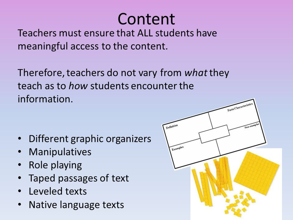 Teachers must ensure that ALL students have meaningful access to the content.