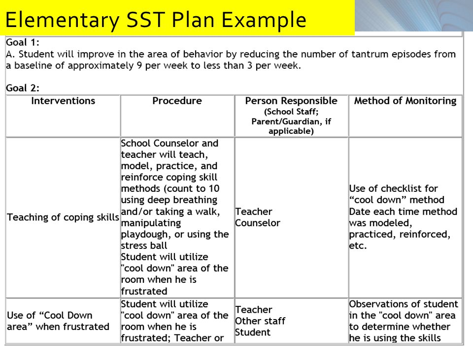 26 Elementary SST Plan Example