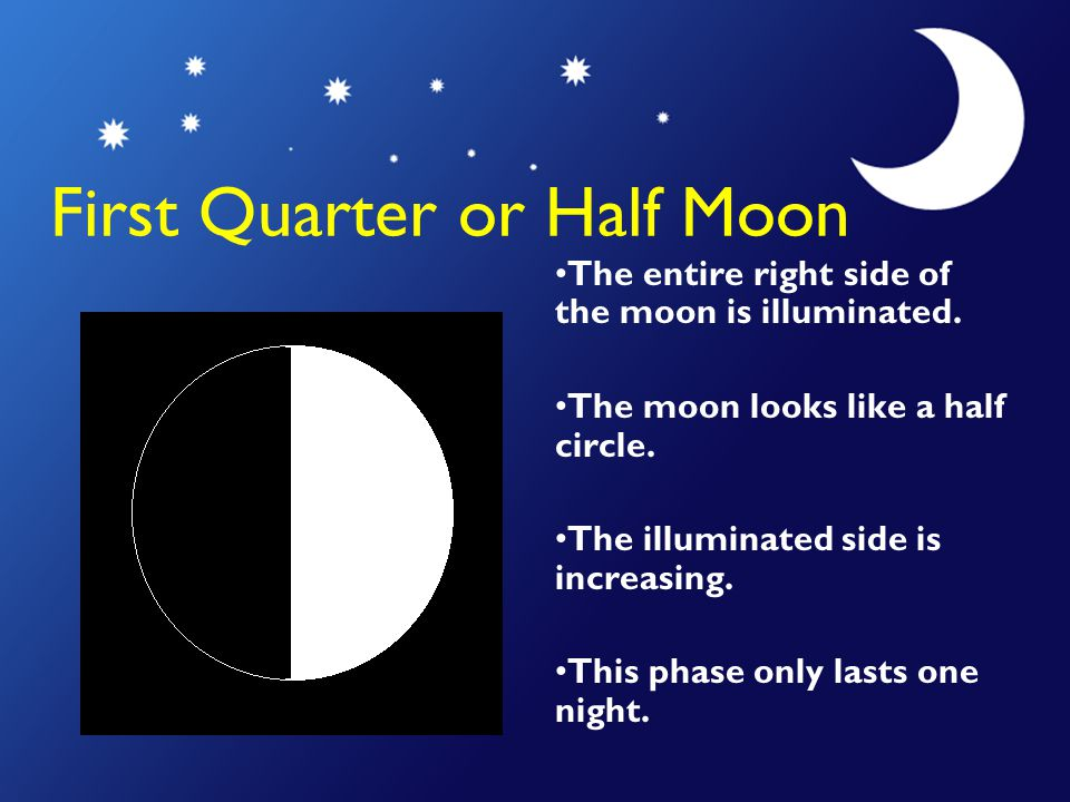 First Quarter or Half Moon The entire right side of the moon is illuminated. The moon looks like a half circle. The illuminated side is increasing. Th