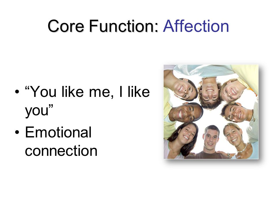 "Core Function: Core Function: Affection ""You like me, I like you"" Emotional connection"