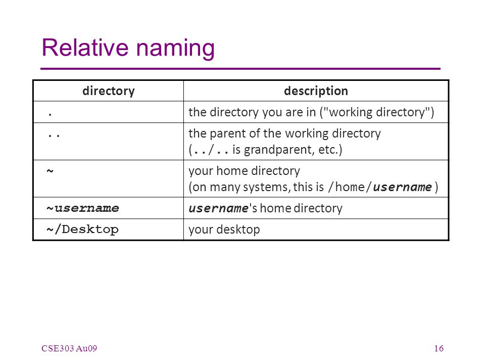 Relative naming CSE303 Au0916 directorydescription. the directory you are in (