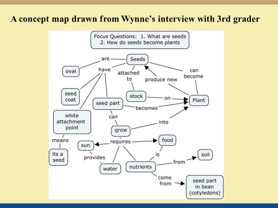 A concept map drawn from Wynne's interview with 3rd grader