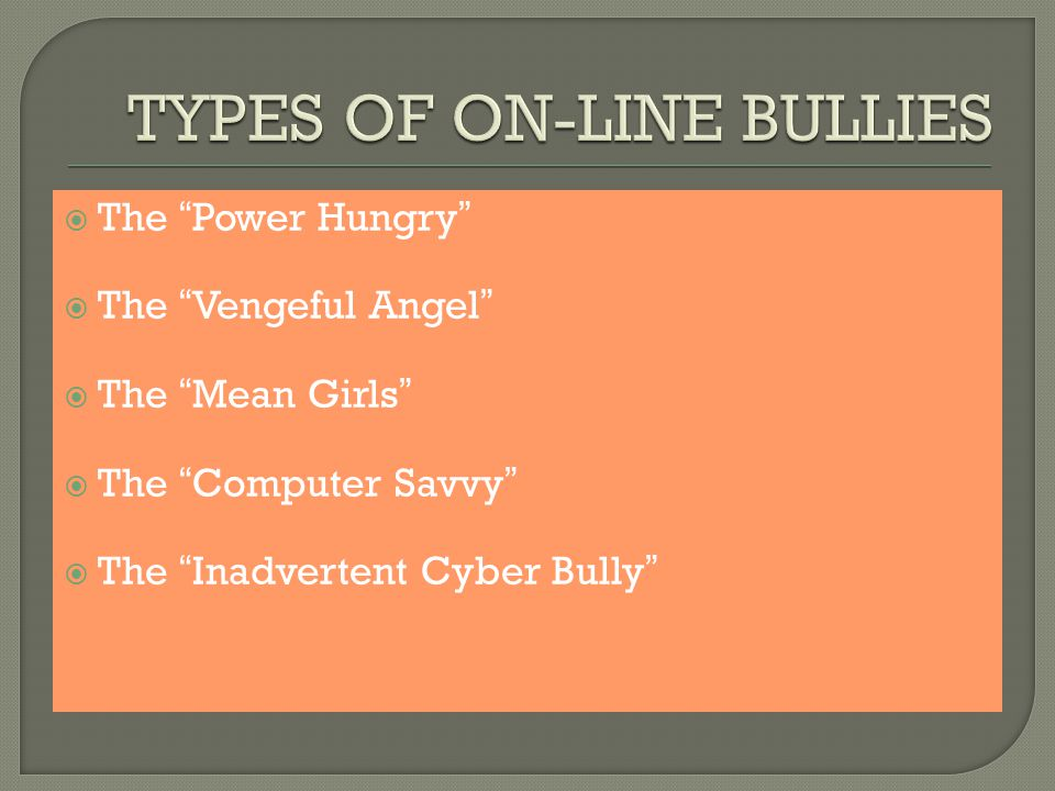  The Power Hungry  The Vengeful Angel  The Mean Girls  The Computer Savvy  The Inadvertent Cyber Bully
