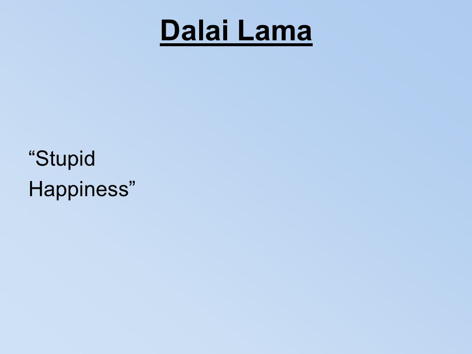 "Dalai Lama ""Stupid Happiness"""
