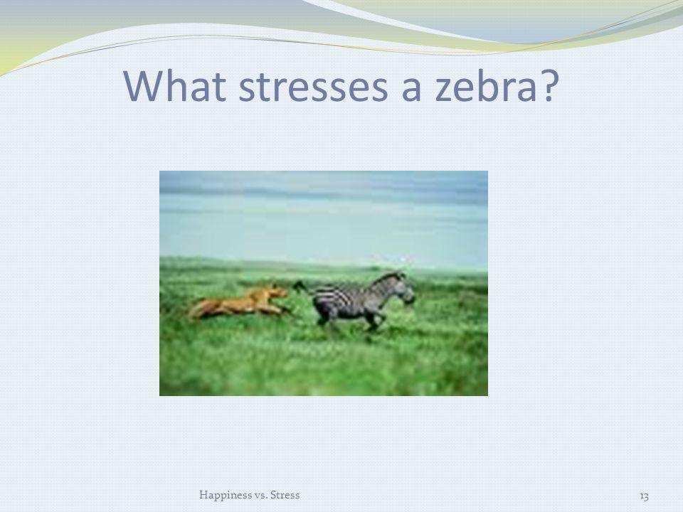 What stresses a zebra? Happiness vs. Stress13